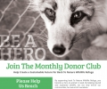 BTN Monthly Donor Club