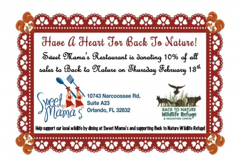 10% DAY on FEB 18th@ Sweet Mama's Restaurant in Lake Nona